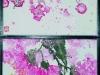Prunus mume, Eucalyptus sideroxylon, plum blossom, gum blossom – coming here