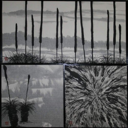 Xanthorrhoea series
